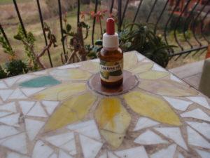 Deodorante stick - Olio essenziale tea tree