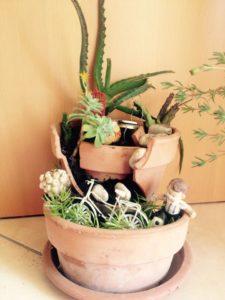 Vaso rotto: mini giardino