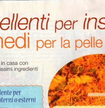repellenti insetti