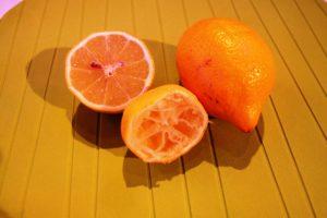 Unghie - Limone esausto