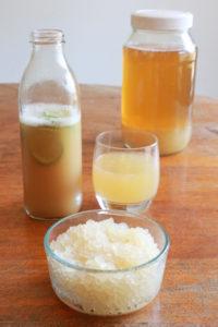Kefir d'acqua - Ingredienti