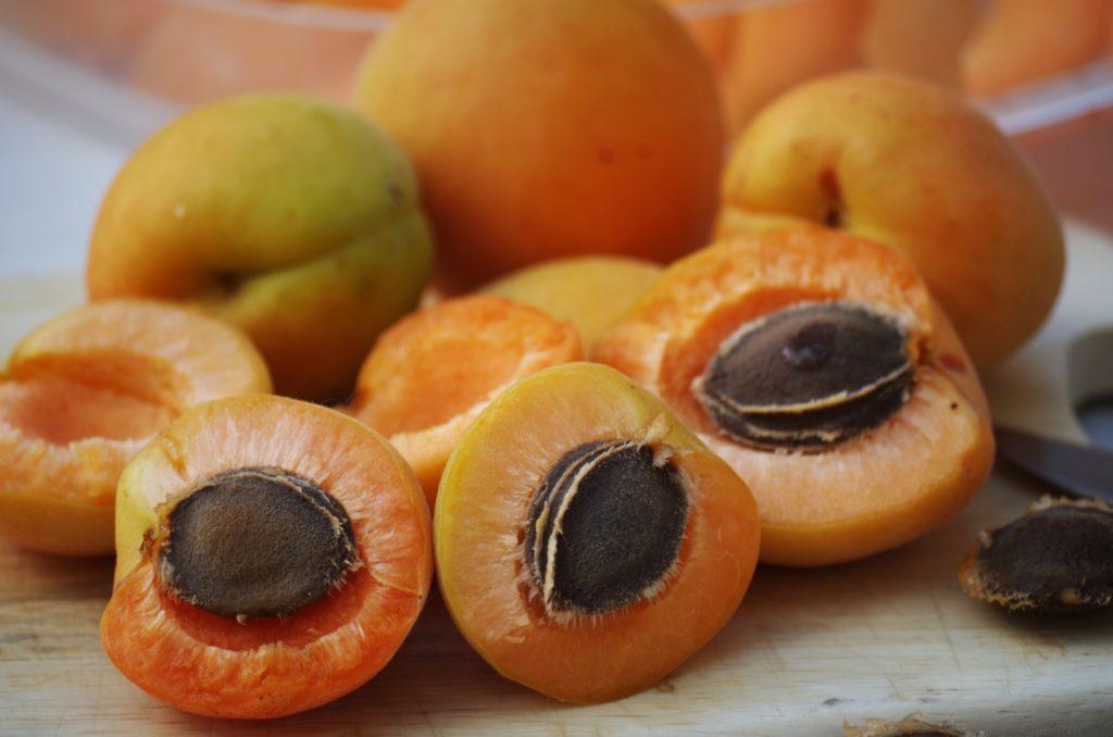 Frutta essiccata - Albicocche