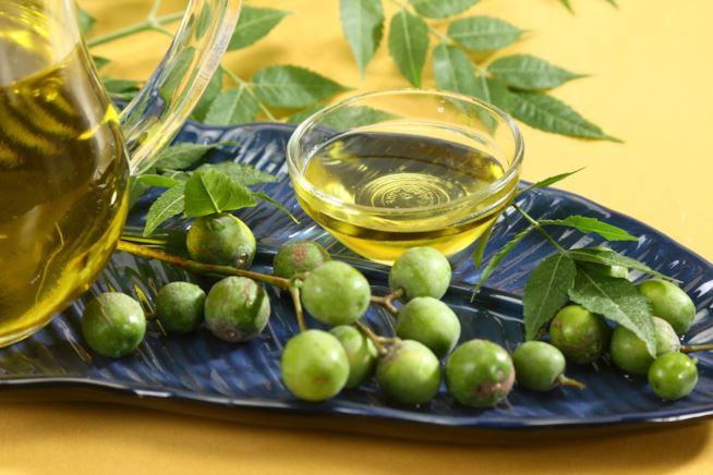 olio neem proprietà