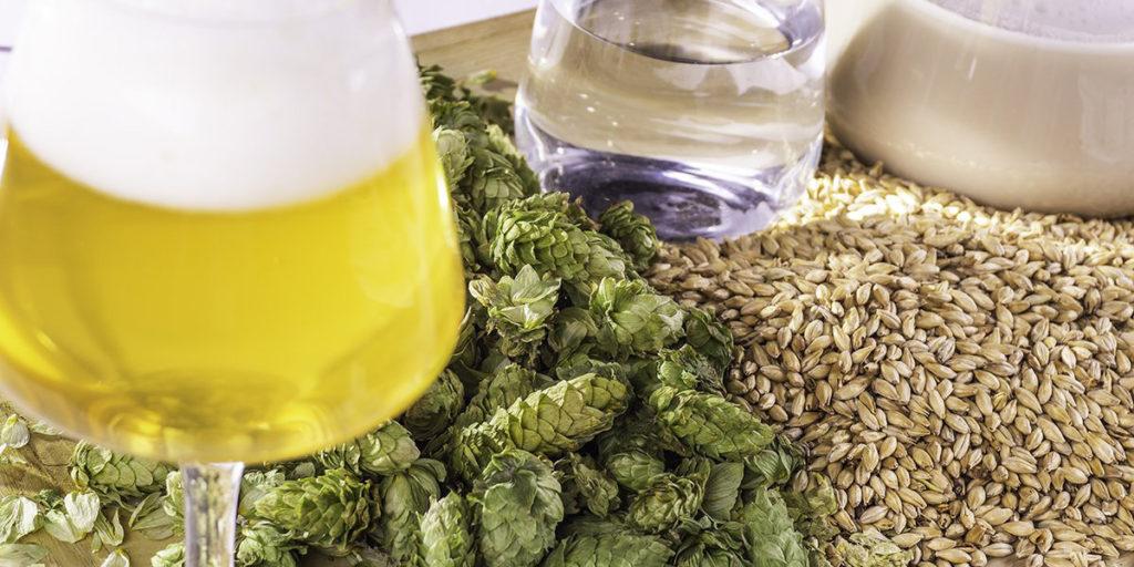 Lievito di birra fai da te - Birra artigianale