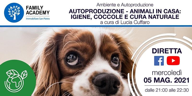 Animali in casa: igiene, coccole e cura naturale