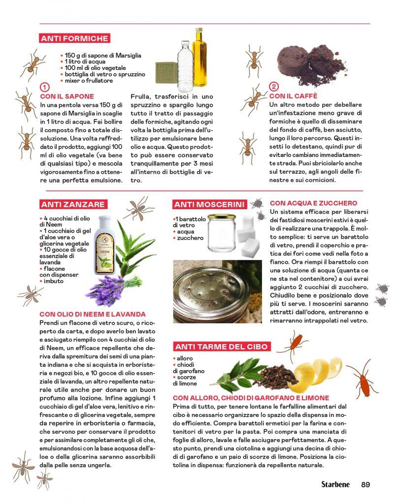 Rimedi per allontanare insetti in casa su StarBene - Lucia Cuffaro